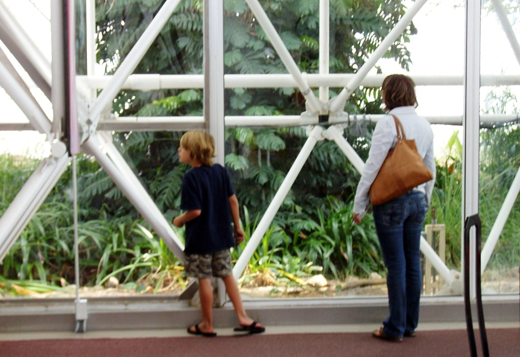 Mary and Zach inspect the rain forest in Biosphere 2.
